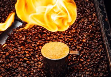 CoffeeTour